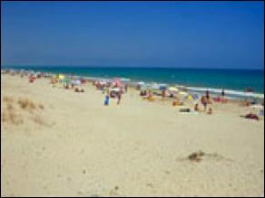 пляж в эльче